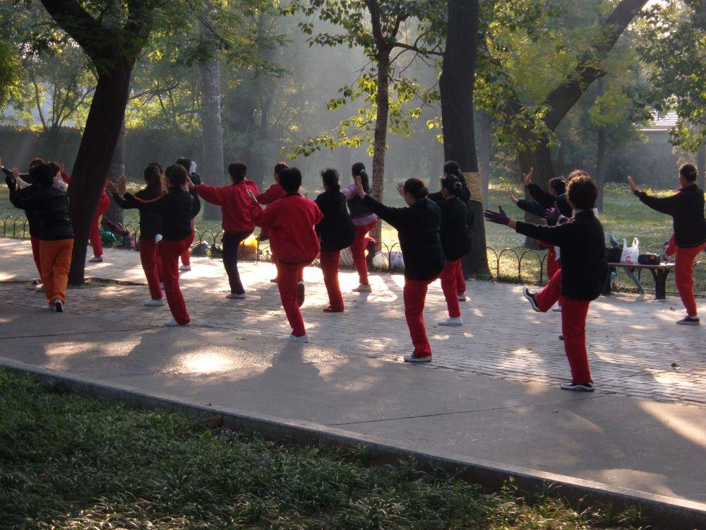 O que é Tai Chi Chuan? Aprenda mais sobre esta arte marcial!