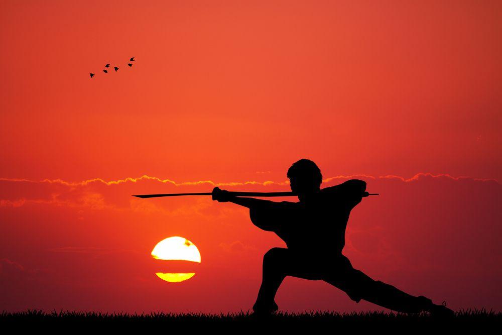 Quais são as principais regras do Kung Fu? Aprenda aqui!