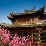 Conheça algumas tradições da cultura chinesa