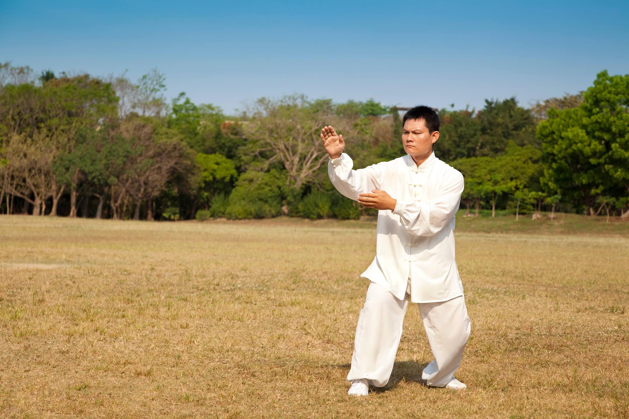 Saiba tudo sobre o estilo Louva-a-Deus no Kung Fu