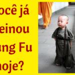 Você já treinou kung fu hoje?