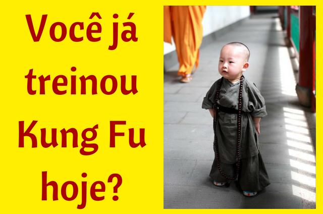 voce ja treinou kung fu hoje