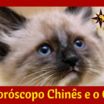 O Horoscopo Chinês e Gato