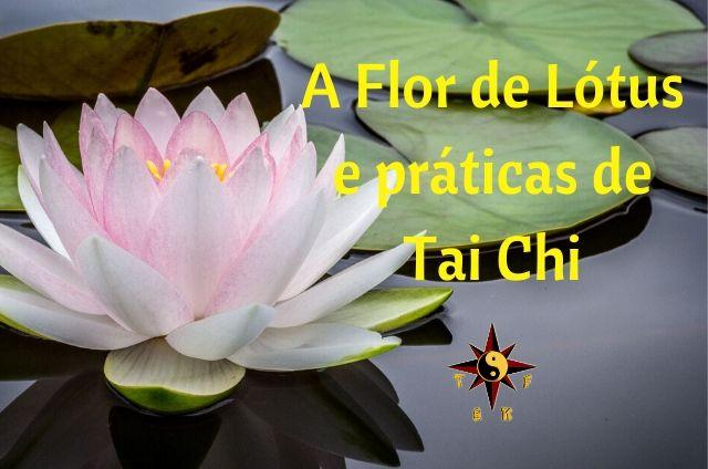 A Flor de Lótus e Práticas de Tai Chi