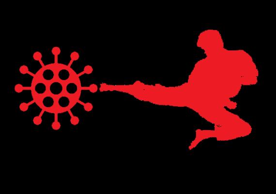TSKF Kung Fu, Protocolo para Covid-19