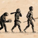 A Lei da Evolução